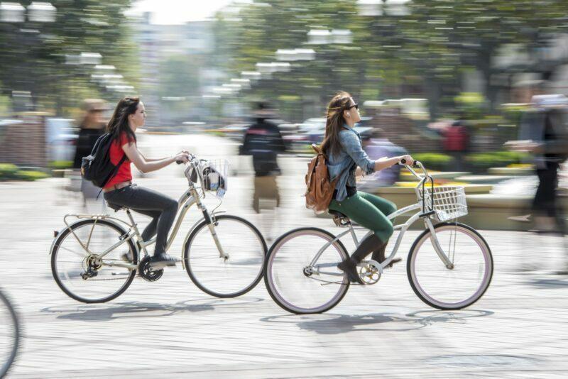 rower domiasta