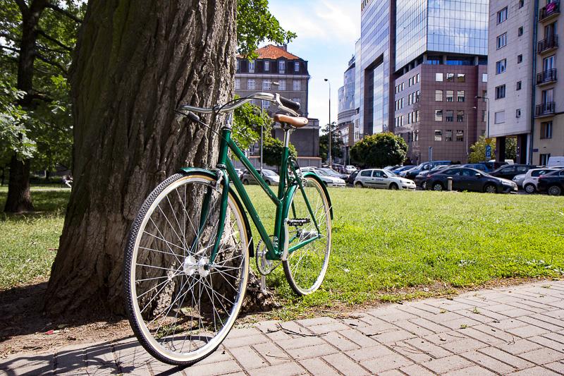 Damka, rower, zielona