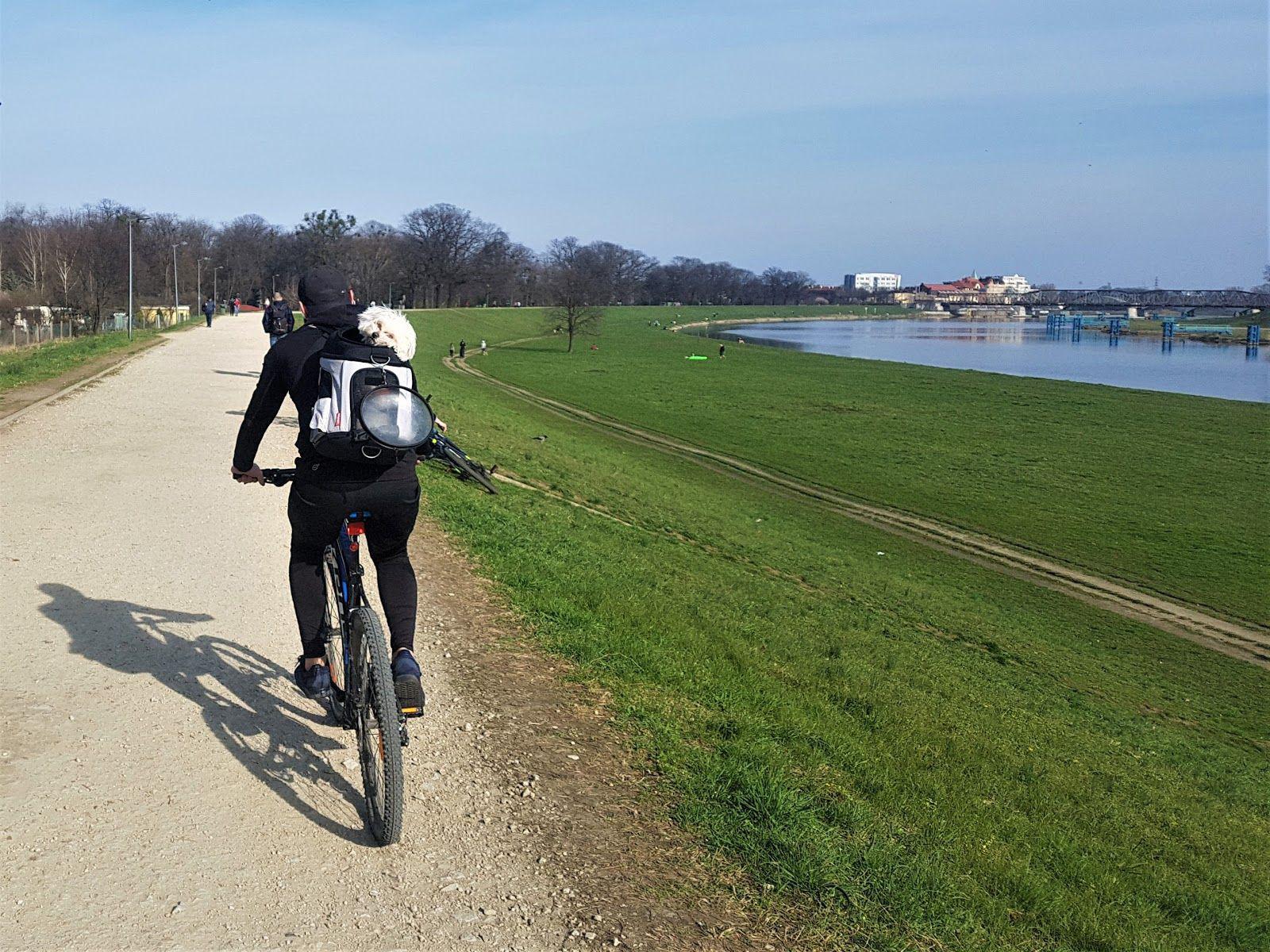 rowerzysta nadodrą