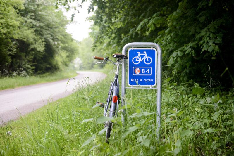 Autostrada rowerowa Dania
